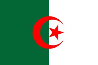 Algeria Flag 4' X 6' Indoor/Parade Flag Set  guidon